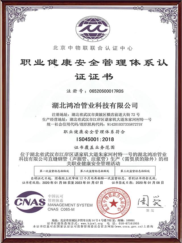 ISO-45001职业健康安全体系认证(中文)